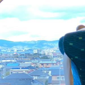 奈良へ女子旅♡