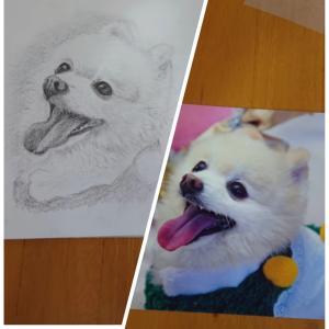 鉛筆動物画を描いてみたい方へオンラインレッスン始めました❤️