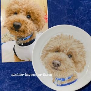 もしゃもしゃが可愛い、まほあきくんお皿に描きました