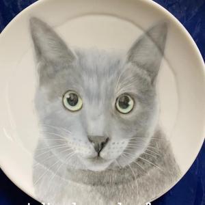 イケニャンのエディくんお皿に描きました