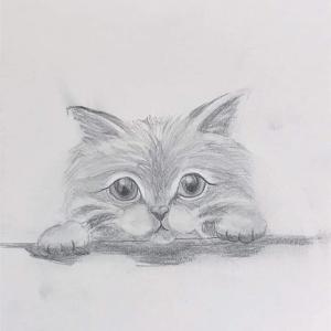 小学三年生で鉛筆画基礎コースに挑戦❣️こんなに可愛い猫ちゃんが完成しました♡