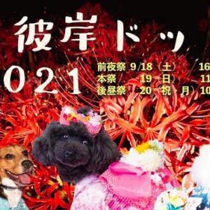 <予告> お彼岸ドッグ2021 【イベント情報】 2021年9月18日(土)・19日(日)・20日(祝月)開催予定