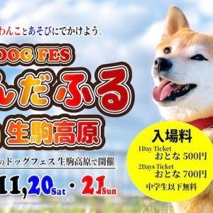 <予告> わんだふる in 生駒高原 IKOMA FES 2021  【イベント情報】 2021年11月20日(土)・21日(日)開催予定