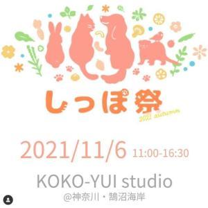 <予告> しっぽ祭 2021 Autumn  【イベント情報】 2021年11月6日(土)開催予定