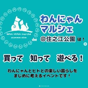 <予告> わんにゃんマルシェ@住之江公園 vol.2  【イベント情報】 2021年11月14日(日)開催予定