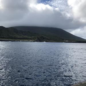 【釣果】八丈島(2019年10月)