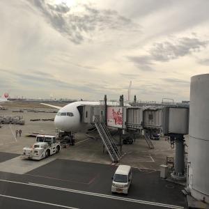 京都(大阪伊丹)への飛行機の旅(往路)