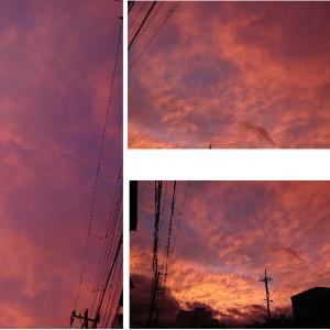 夕日・・不気味な色でした