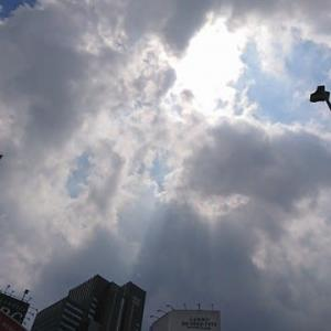【お散歩】20/8/14 「未来は美しい夢を信じる人のためにあります」