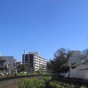 【午前のお散歩】 2020/9/28 水色の空の下、秋風に吹かれて