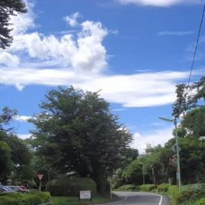 【お散歩】21/6/20 「人生は呑気な楽しい休日でも、気の利いたことが記されている書物でもありません」