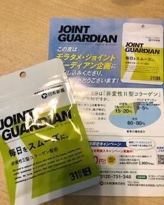「日本新薬ジョイントガーディアン」をタメしました。