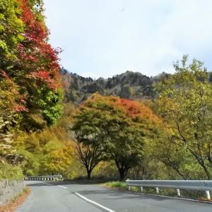 秋の美ヶ原高原散策とビーナスラインを紅葉ドライブ【服装/アクセス等】