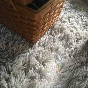 絨毯ジプシー
