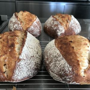 スペルト小麦100%のカンパーニュレッスン