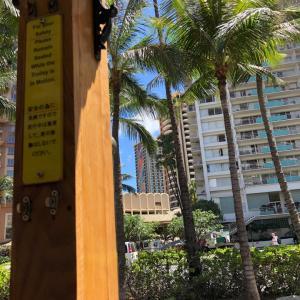 2019年も望みが叶いハワイ旅行記と、パワースポットで浄化とチャージしてきたオイルイベント出店