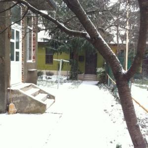 ヨーロッパ移住活動中にすること編<英語力>&街に雪が!!!