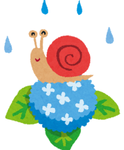 AGA卒薬100日目(服薬1502日)梅雨でも夏でも乾燥する頭皮を予防し対処する方法