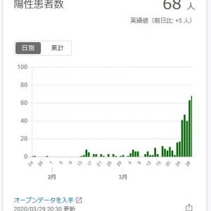 【コロナ】東京都の感染者数の推移が異常、陽性率も異様に高い。
