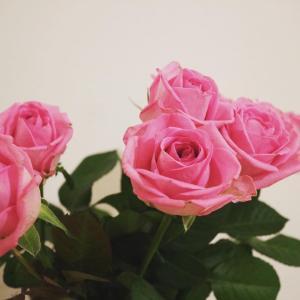 こんな時こそ花を飾る