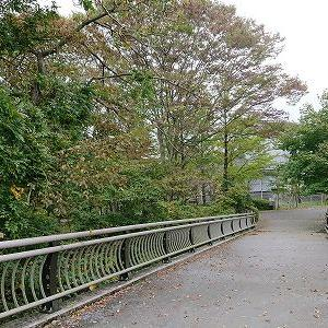 橋梁技術発表会in仙台 2019年10月25日