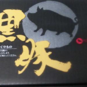 日本管財の優待で選択した商品到着