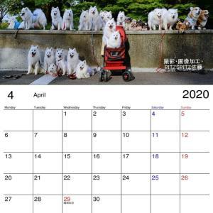 no.2  2020年の(3月  4月)スピカレンダー 作成