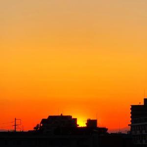 今日の夕焼けと梅の花と数秘術からみる日本の運命数♬︎