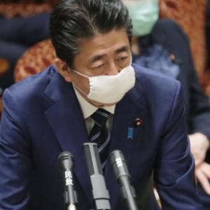 政府がマスクを配布する意味がわからないバカ