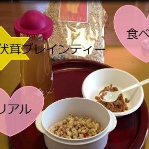 山伏茸ブレインティー初めての味でした!色々アレンジして食べてみたい ヤマブシタケ 通販アマゾン