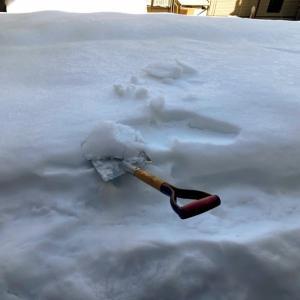 実家の屋根の雪下ろし