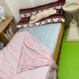 ニトリのNクールシリーズ、ひんやり寝具を買いました