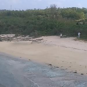 朝の散歩 浜辺で出会った老夫婦とのひととき