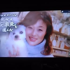 心の風景 衝撃 感動的「彼女は安楽死を選んだ」NHK スペシャル