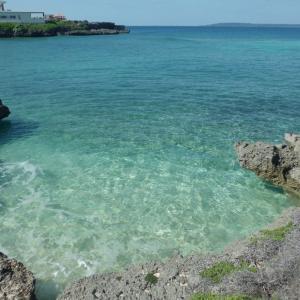 南の島に生きて ・友達からの応援メッセージ ・浜辺の海亀