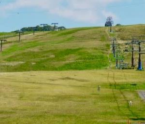 桃色吐息の丘・コキアの丘 そして郡上八幡