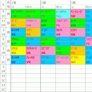 東京の法則【D】~7日(日)