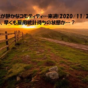 動きが静かなコモディティ…来週(2020/11/23~)から、早くも雇用統計待ちの状態か…?