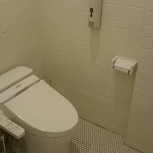 目指せ全捨離ファイト!トイレ掃除と昨日よさようなら!