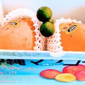 【2020年★マンゴーキャンペーン(祭)開催します!!】