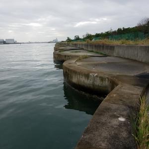 落とし込み(目印)、南港セル石、そして新波止に移動と沖堤防をランガン⭐