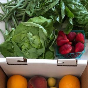 野菜と果物が美味しいカリフォルニアライフ