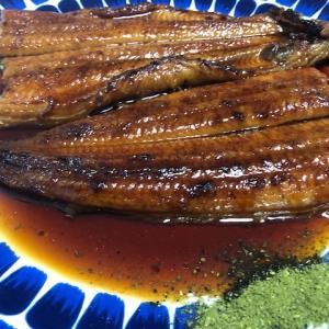 鰻と日本酒でトロける