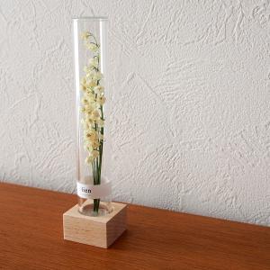 sankaのボトルフラワー【lien(リアン)】を部屋に飾る