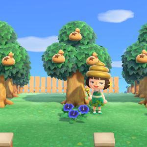 【あつ森ライフハック】④家族で島共有「カネのなる木」管理法