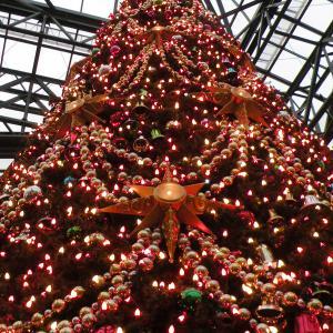 2009年12月 東京ディズニーランド(TDL) 13