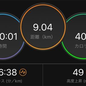 疲労抜きジョグとシューズ交代【2019/09/22昼ラン】