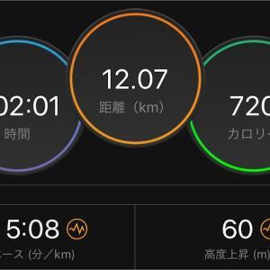 不整地ジョグ【2019/07/31夜ラン】