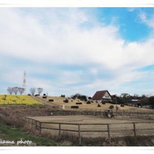 初めての楽しい牧場体験 ♪ ③