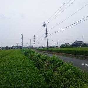 京~名古屋の1泊2日 380kmライド 2日目